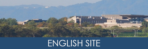 English Site